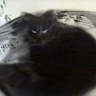 Sumi-e cat (brush and ink on paper)