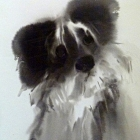 Sumi-e dog (brush and ink on paper)