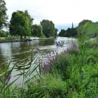 The beautiful Avon River and Trinity Church at Stratford-upon-Avon (burial site of Shakespeare)