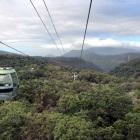 Sky-Rail-over-rainforest-Cairns