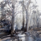 Candlebark-trees-painting-at-the-shady-pool