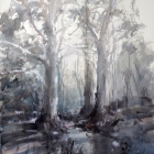 Heysons-Candlebark-Trees-at-the-Shady-Pool-WC-54-x-74cm