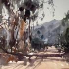Flinders Ranges WC 74x54cm